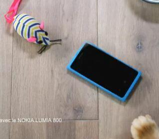 Mon chat vous fait la démo du Lumia 800