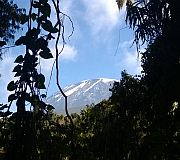 [Un Lumia sur le Kilimandjaro] Partie 1 : Les préparatifs et les mobiles en Tanzanie