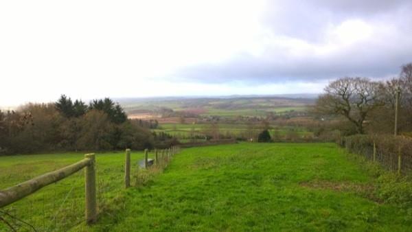 land-scene