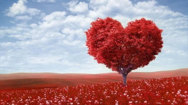 Id es et applis les incontournables pour la saint valentin nokians la p - Parole saint valentin ...