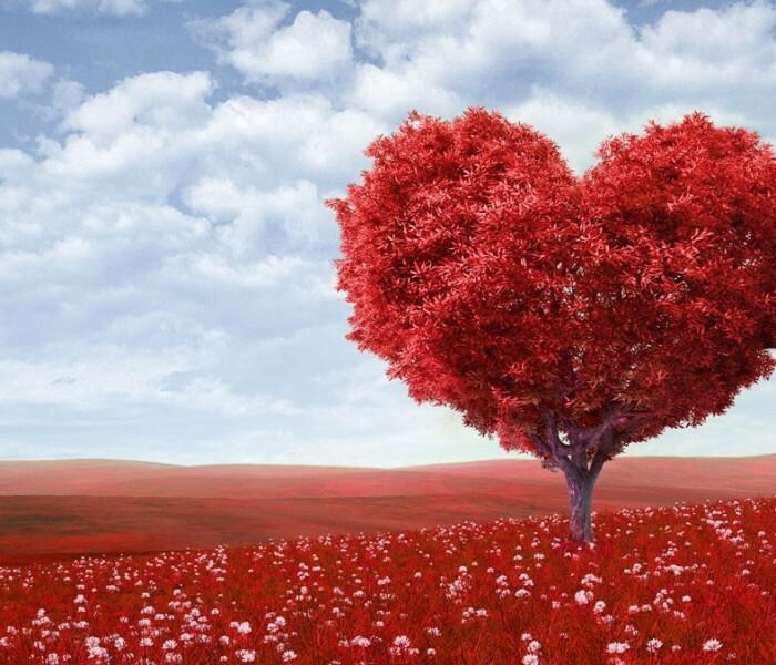[Idées et Applis] Les incontournables pour la Saint Valentin