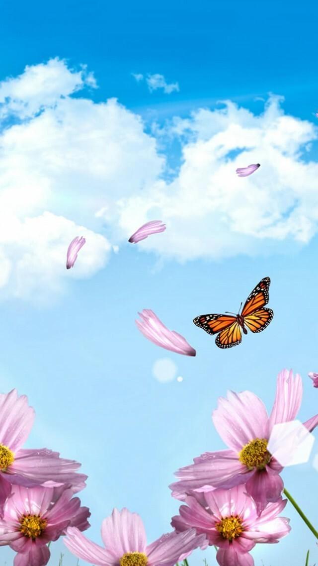 wallpaper-spring-5