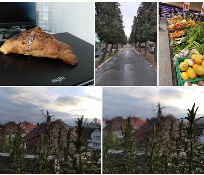 Quelques photos capturées avec le Nokia 8.1
